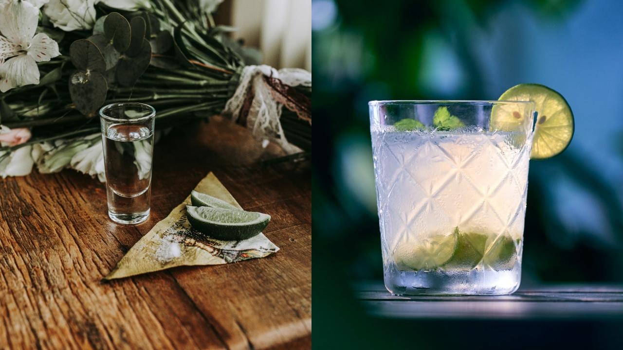 Opciones para celebrar el Día Internacional del Tequila: ¿Derecho o en coctel?