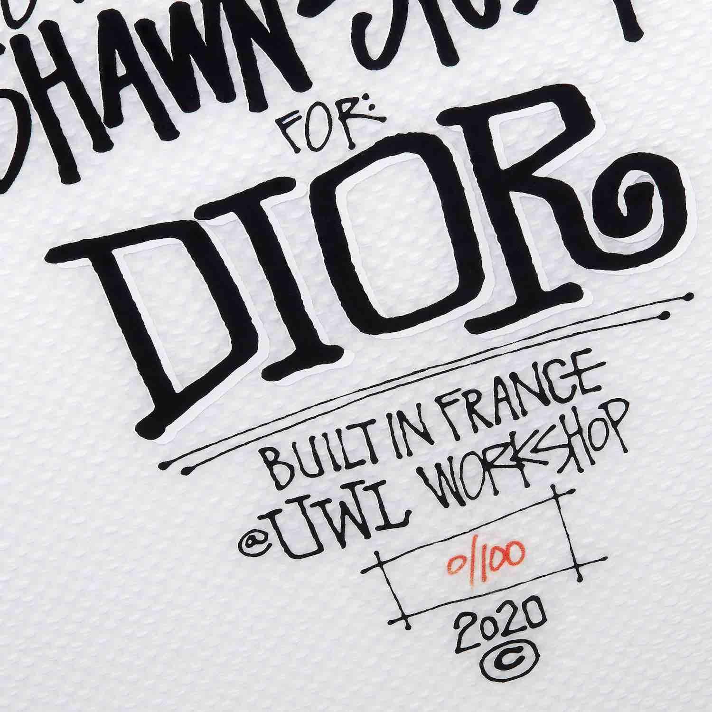 Dior Shawn Stussy