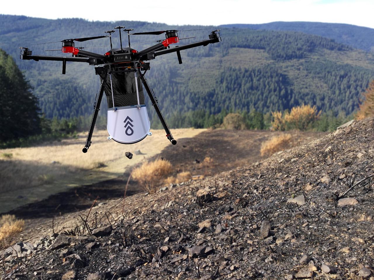 Por incendios forestales, utilizan drones para plantar árboles desde el cielo