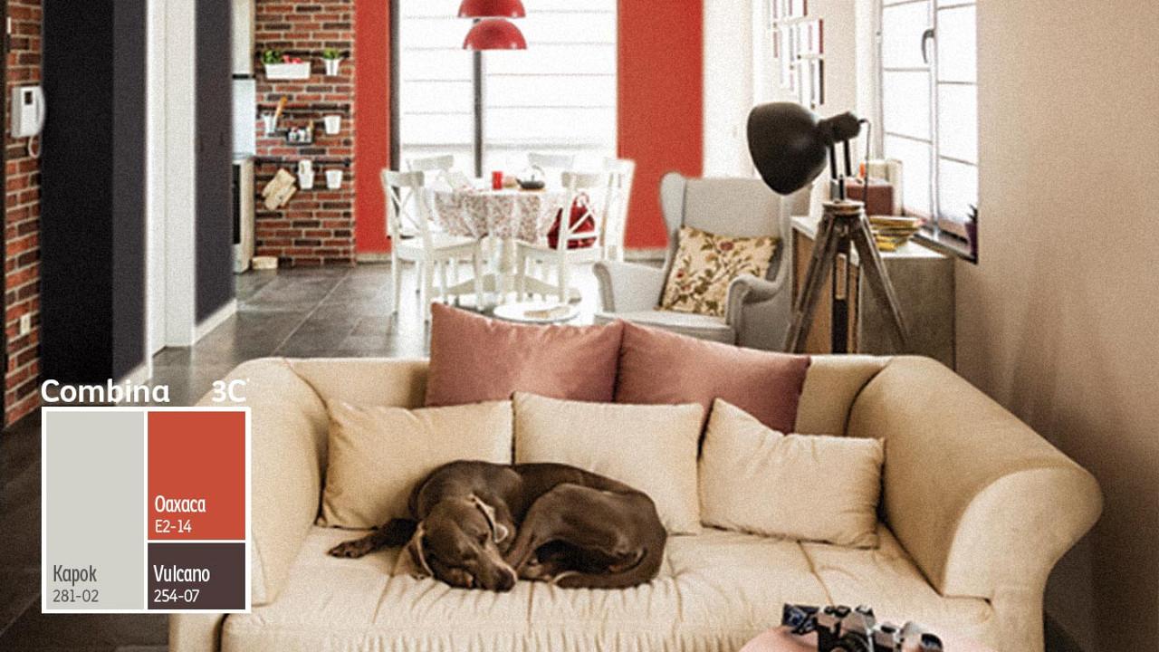 Reinventar y transformar tus espacios: ¡Color Gratis con Comex!