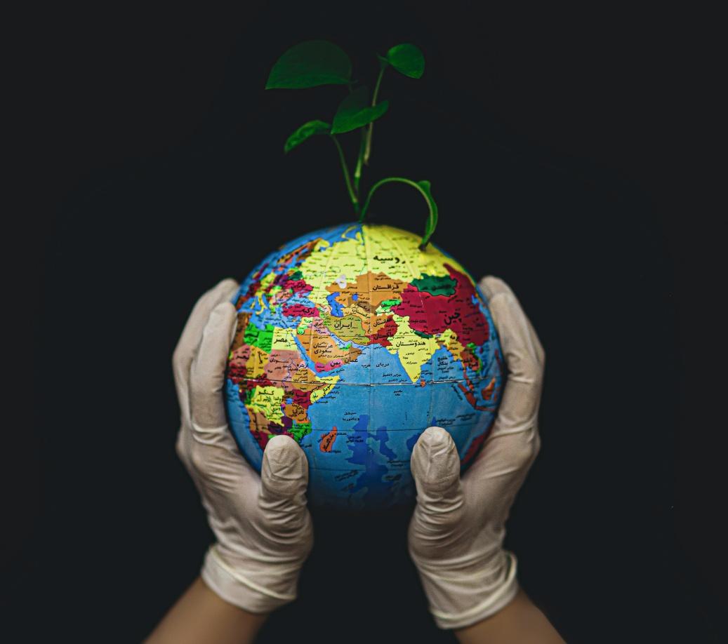 Cuidado del planeta veganismo