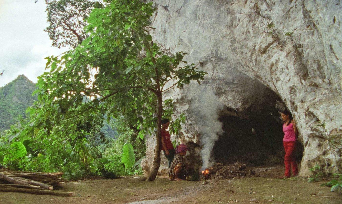 The Tree House, de Minh Quý Truong: el peso de la nostalgia
