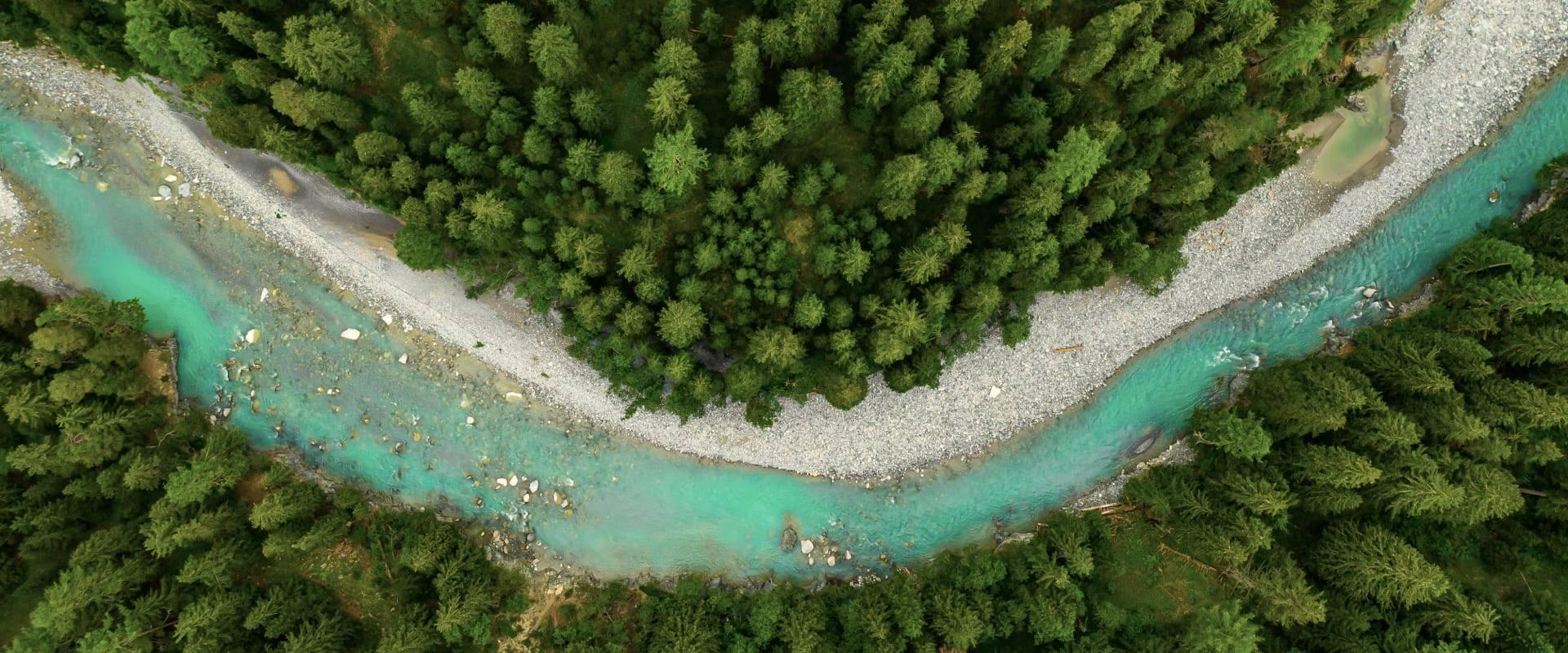 L'Oréal por el futuro: su ruta para preservar el medio ambiente