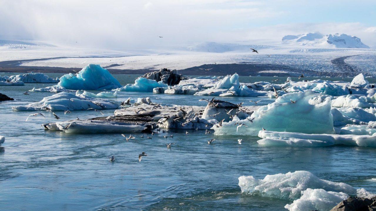 Sábana de tela ayuda a proteger glaciar sueco del calentamiento global