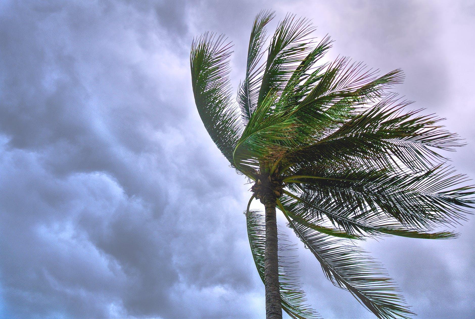 Tormenta tropical Zeta podría convertirse en huracán; avanza hacia Yucatán
