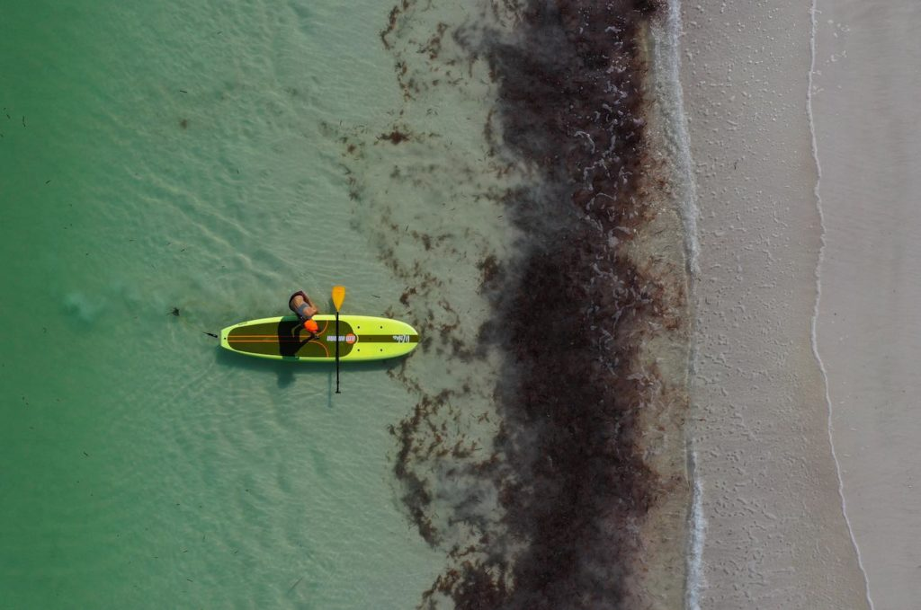 Yucatán playa el cuyo