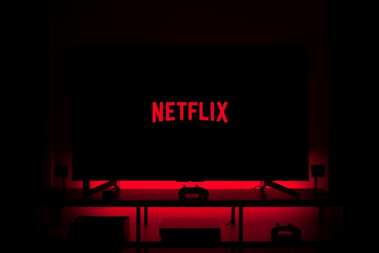 Netflix eleva 73% sus ganancias, pero se queda corto en suscriptores