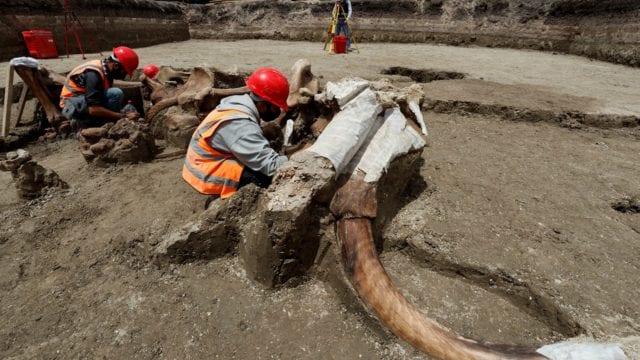 santa_lucía_aeropuerto_descubrimiento_mamuts_erqueología