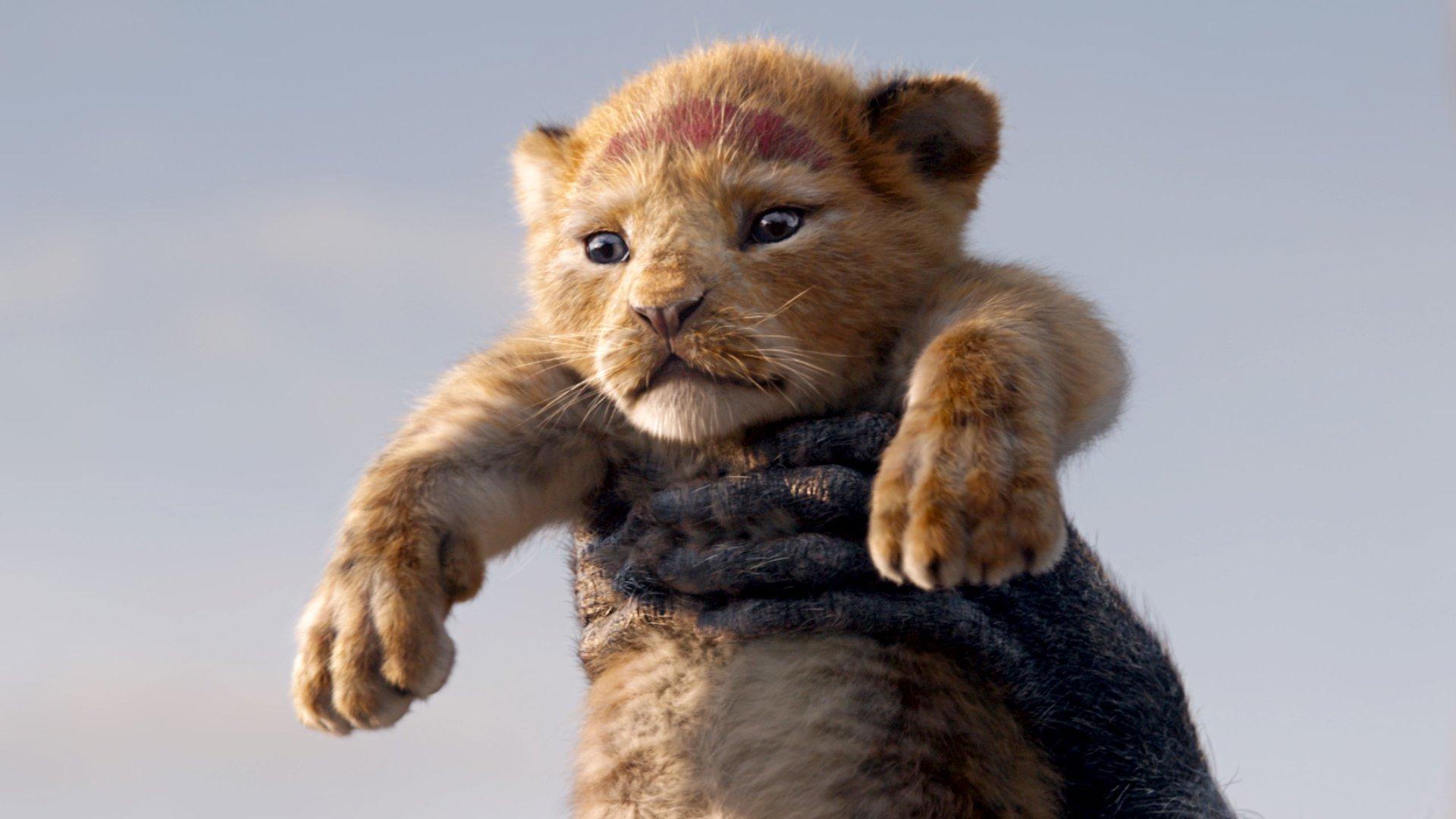 el rey león secuela Barry Jenkins