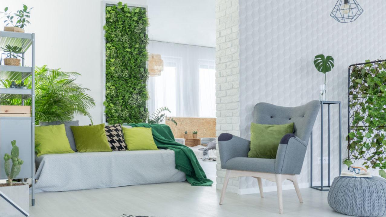Ventajas de los muros verdes dentro y fuera de casa