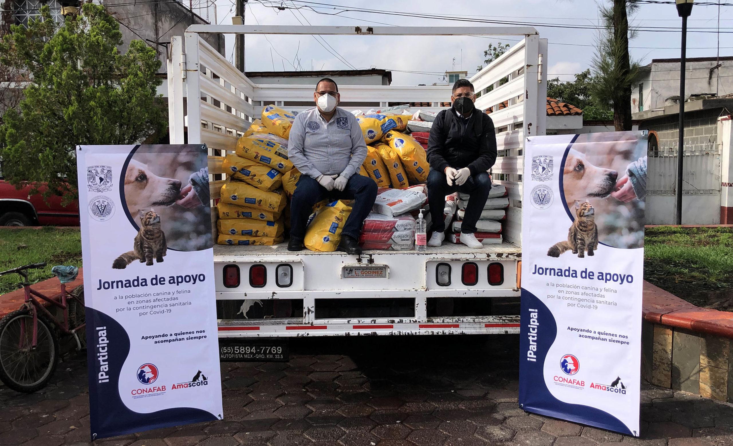 UNAM dona 33 toneladas de alimento para perros y gatos en la CDMX