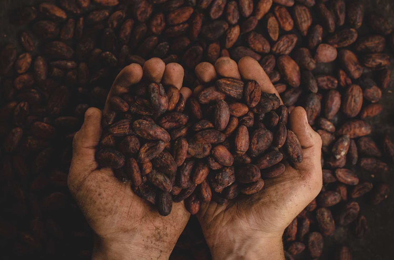 Mezcal y chocolate: el místico maridaje sensitivo que conquista