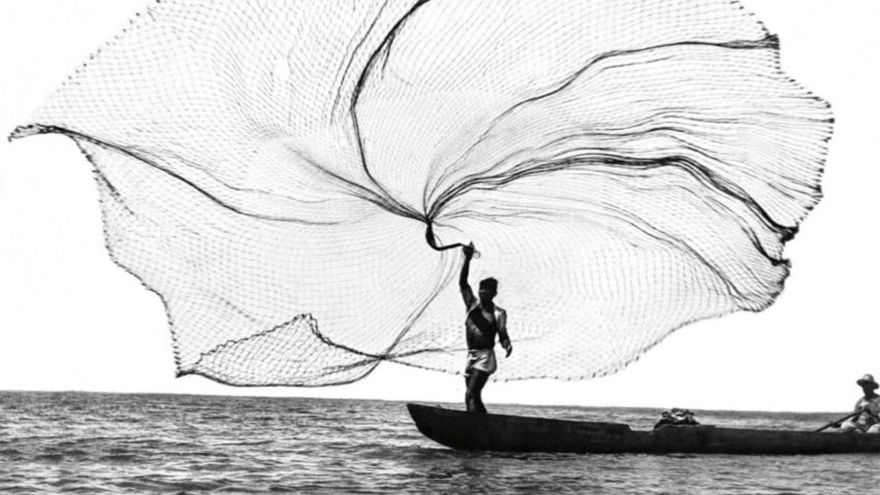 Conoce las obras que formarán parte de la Subasta Arte Vivo 2020