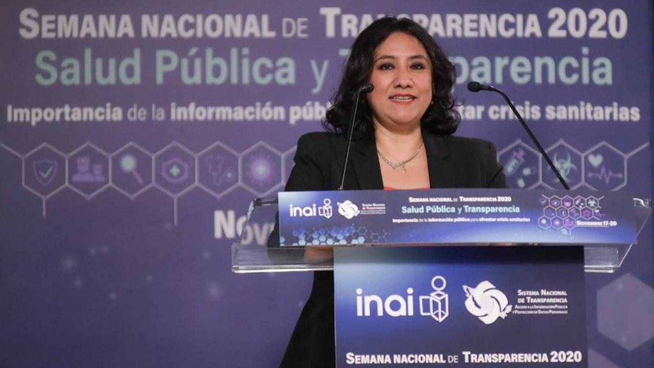 Crisis por Covid-19 le vino como anillo al dedo a la 4T: Irma Eréndira Sandoval