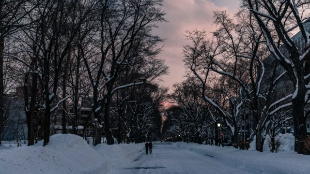 solsticio de invierno Tierra Sol