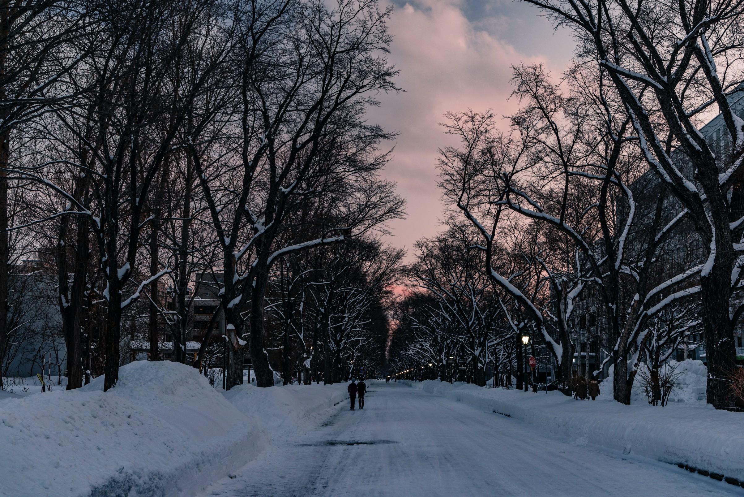 Llega el solsticio de invierno: Hoy es el día más corto del año