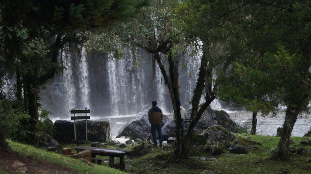 Baño de bosque japonés Kohler salud