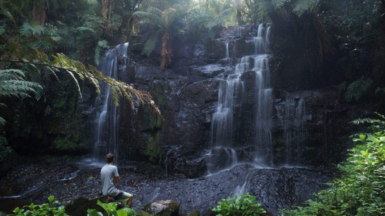 Baño de bosque japonés bañera Kholer