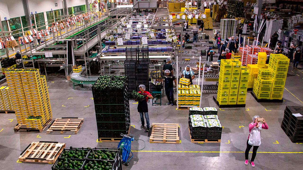 Las exportaciones agropecuarias de México crecen 10.5% en abril