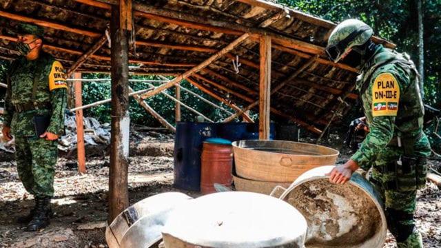 Destrucción del primer plantío de cocaína en Guerrero_04