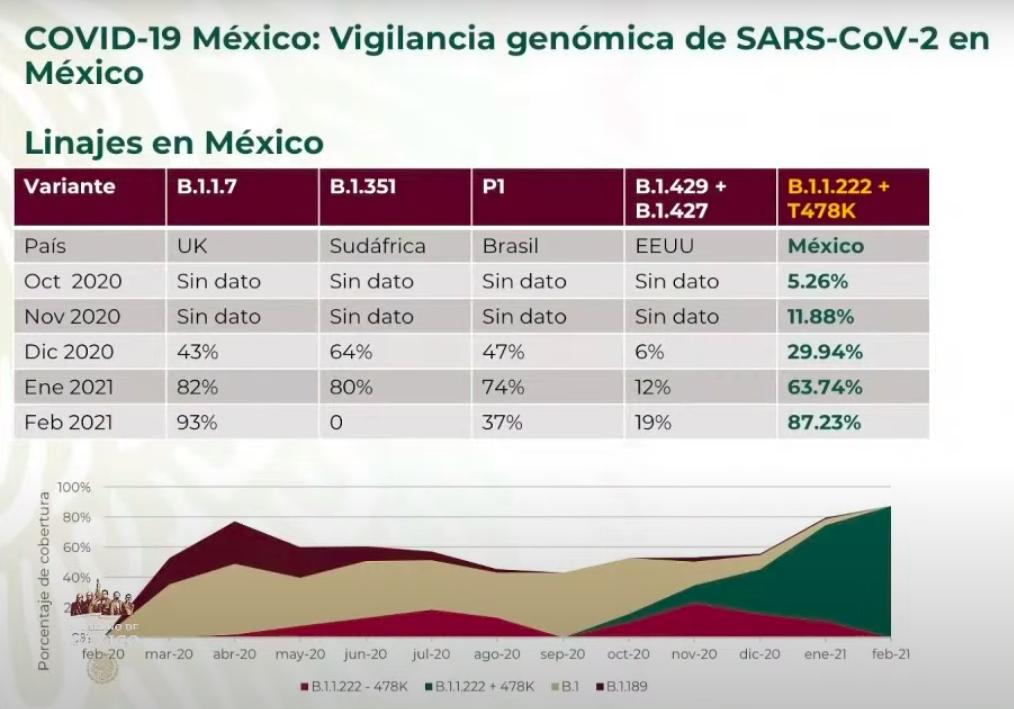 +Coronavirus hoy: nueva cepa causa 87 % de casos en México+