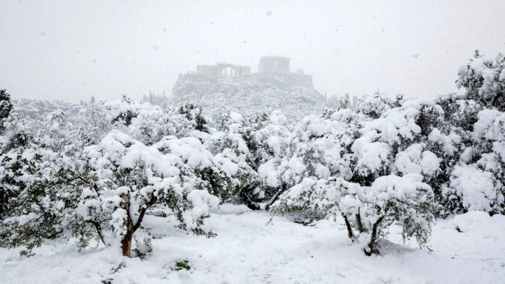 Nevada Grecia