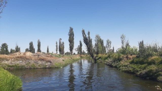 cdmx turismo sostenible xochimilco