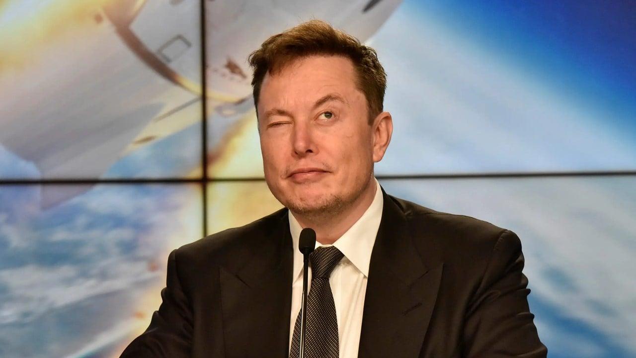 Inviertan en criptomonedas, pero no los ahorros de su vida: Elon Musk
