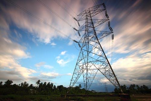 WWF pide al Congreso mexicano que no apruebe nueva ley energética