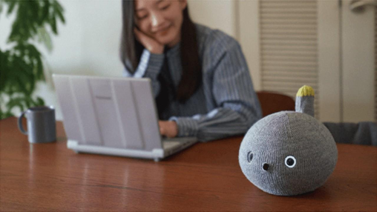 robot mascota NICOBO