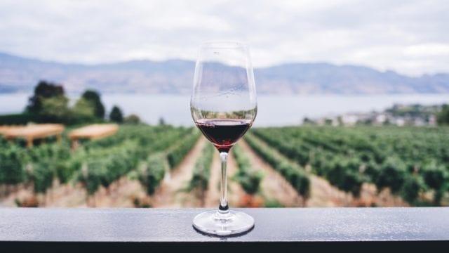 Vinos mexicanos denominación de origen