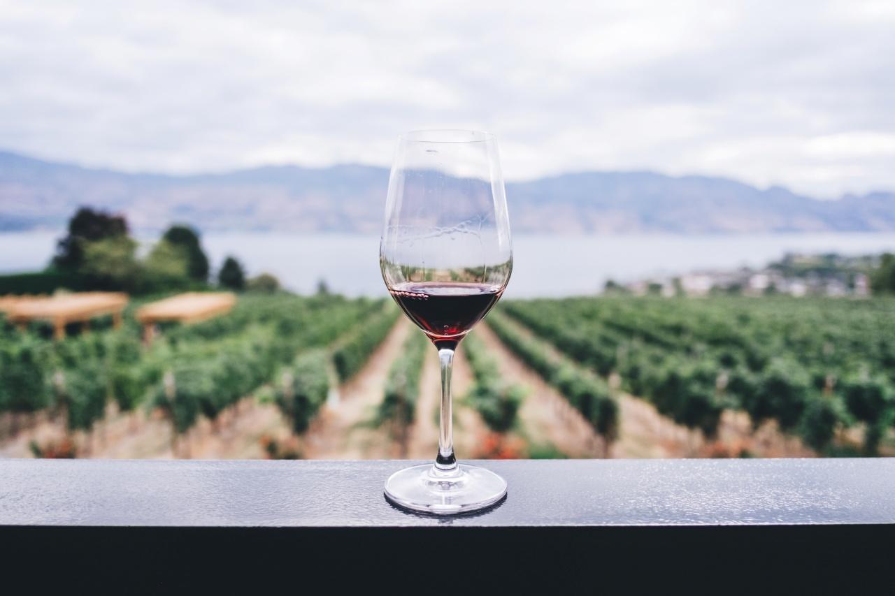 ¿El vino mexicano cuenta con Denominación de Origen?