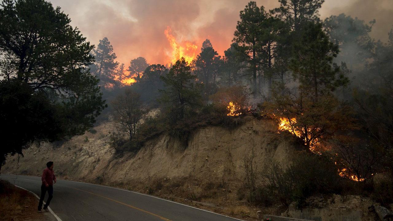 Es una de las peores temporadas de incendios forestales en años: Conafor