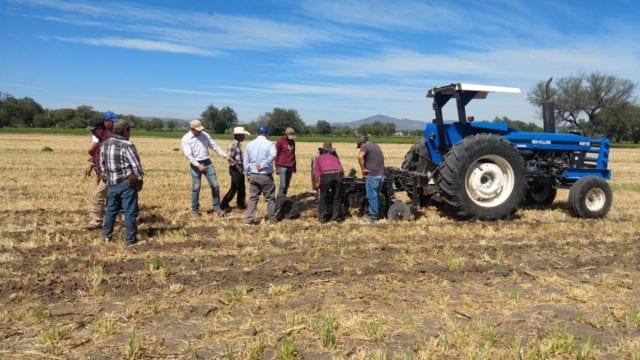 Agricultura sustentable. Crédito: cortesía de Grupo Bimbo.
