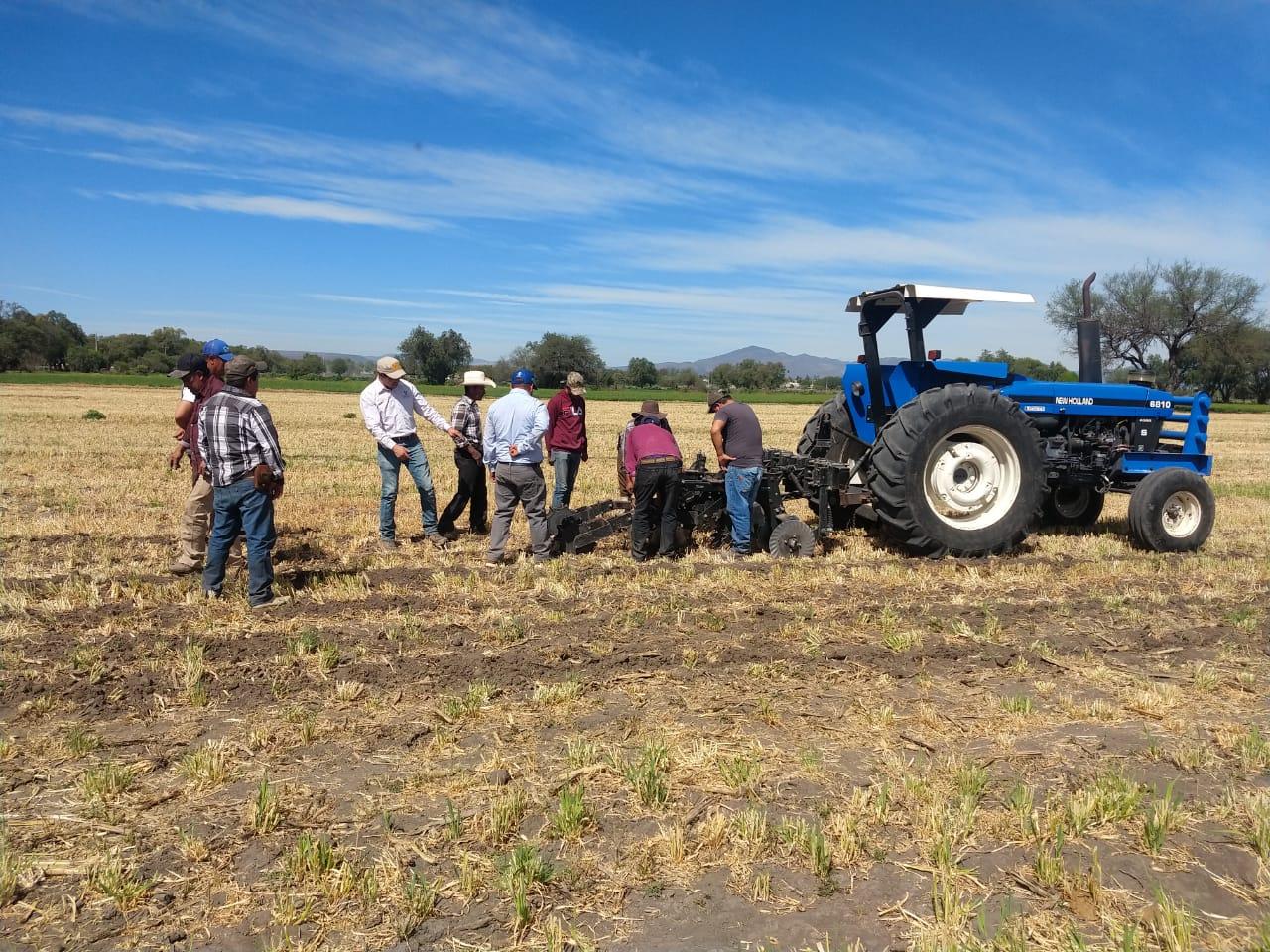 Agricultura regenerativa: la ruta sustentable de Grupo Bimbo