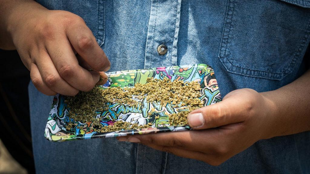 Dia mundial de la mariguana 1