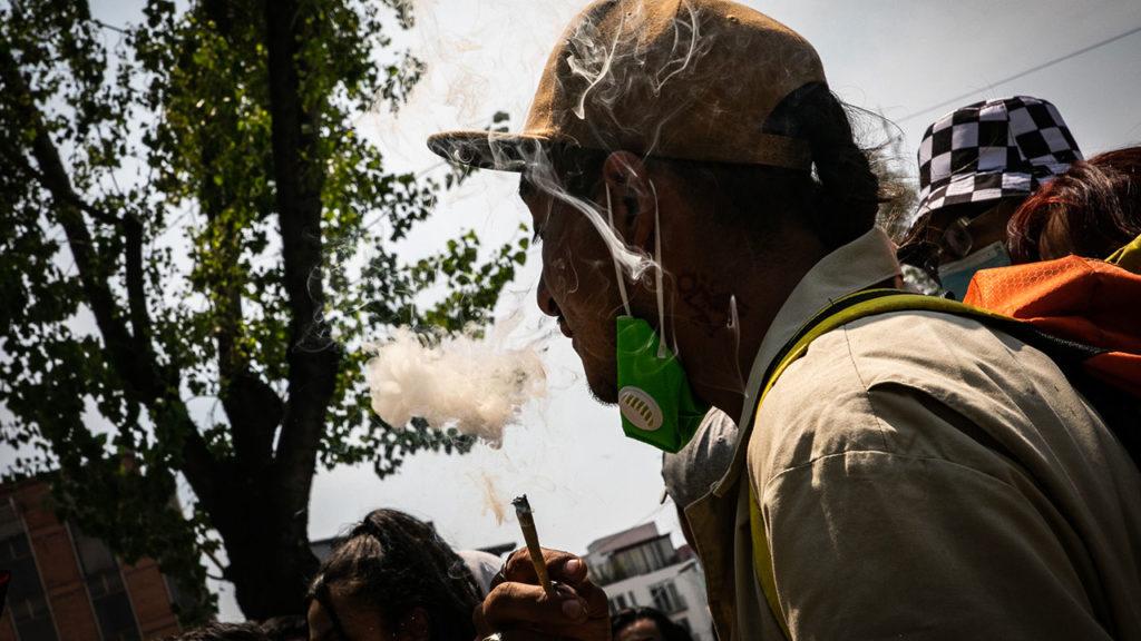 Dia mundial de la mariguana 10