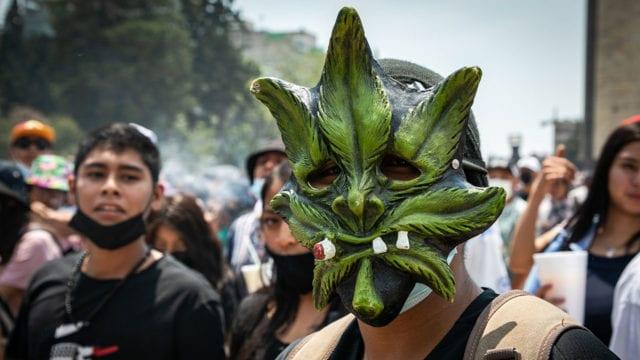 Dia mundial de la mariguana 4