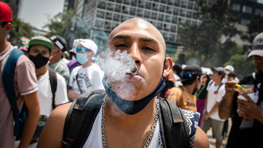 Dia mundial de la mariguana 5