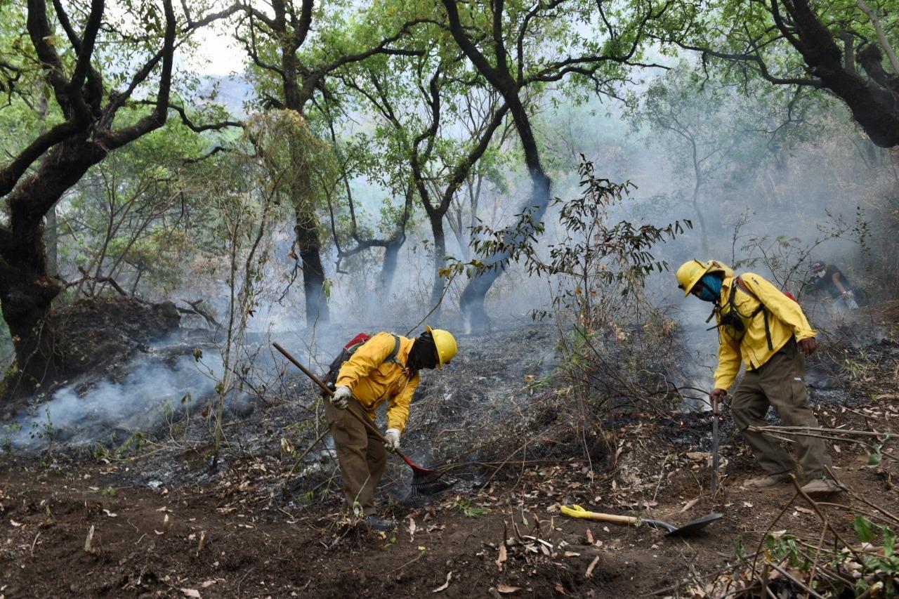 Semarnat recorta 29.5% el pago de cuotas a organismos internacionales ambientales