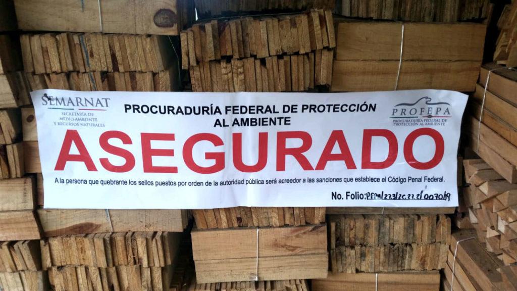 Tala clandestina Zacapoaxtla Puebla