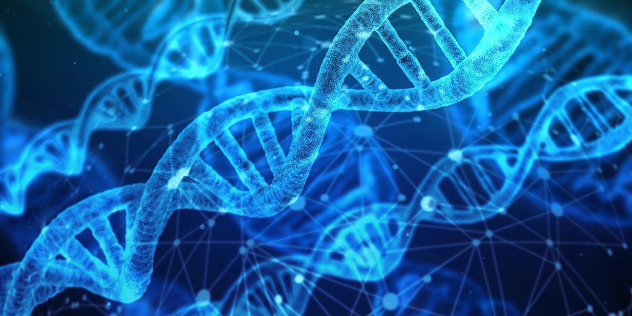 Medicina basada en tu ADN: la puerta para el tratamiento  de enfermedades