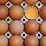 El huevo ha subido más de 12 pesos durante el sexenio de AMLO