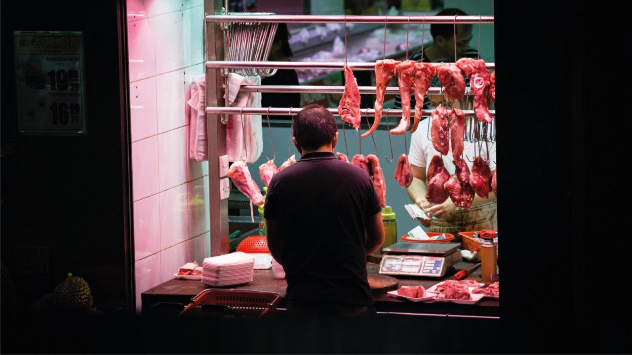 OMS pide no vender más mamíferos salvajes en mercados