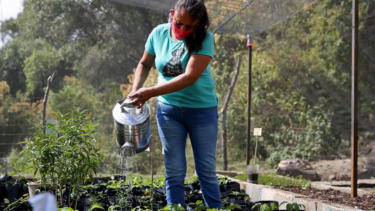 Biden responde a AMLO: 'Consideramos implementar programas sociales en Centroamérica'