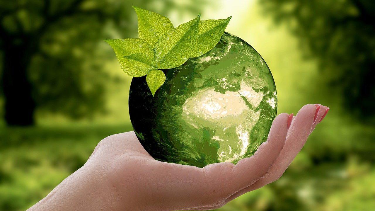Reciclaje firmas de lujo