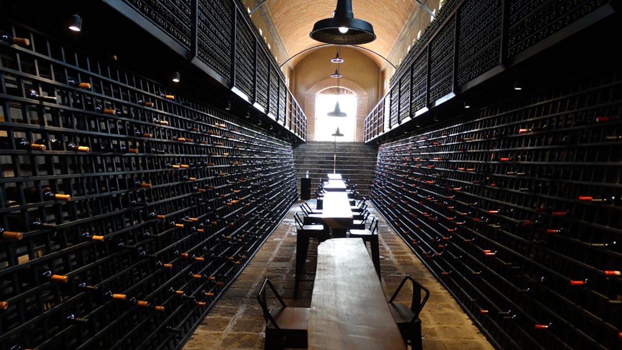 Guanajuato impulsa proyecto de clúster vitivinícola
