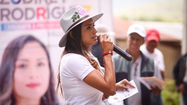 PAN anuncia que suspenderá campañas en el sur del Estado de México