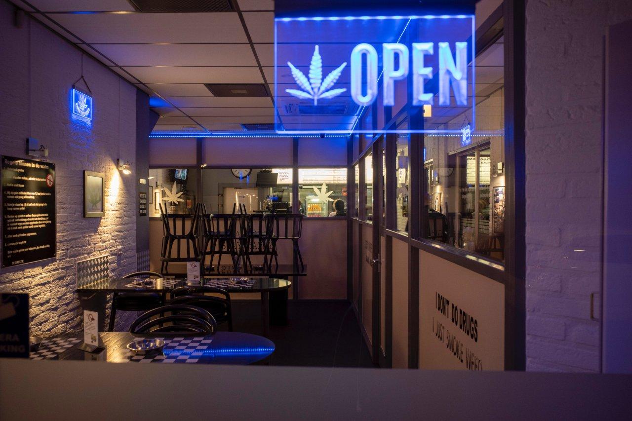 Cannabis medicinal: el modelo de negocios