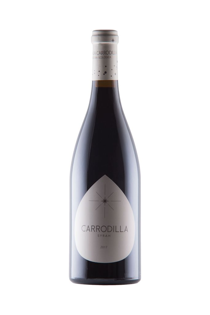 vinos mexicanos vinícola orgánica